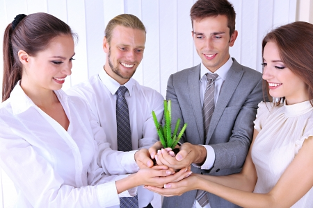 business environment: Business team holding together fresh green sprout