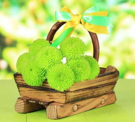 Beautiful green chrysanthemum on wooden basket on table on bright background photo