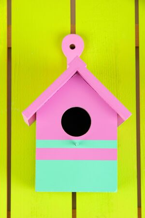 bird house: Decorative nesting box on color wooden background