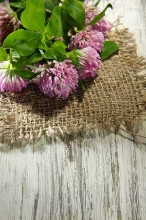 Clover flowers with leaves on wooden background photo