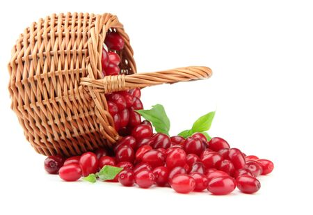 Fresh cornel berries in wicker basket, isolated on white Stock Photo