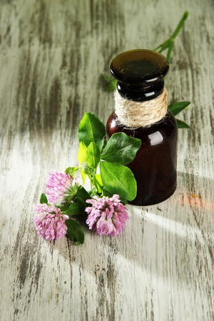 Medicine bottle with clover flowers on wooden table Stock Photo - 21472935