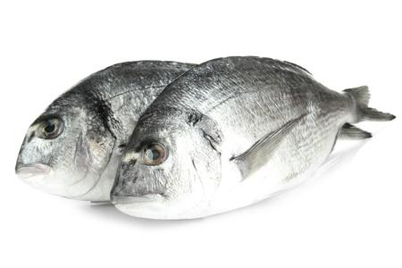 escamas de peces: Pez Dorado aislado en blanco Foto de archivo