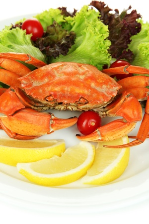 Boiled crab on white plate with salad leaves and tomatoes, close-up photo