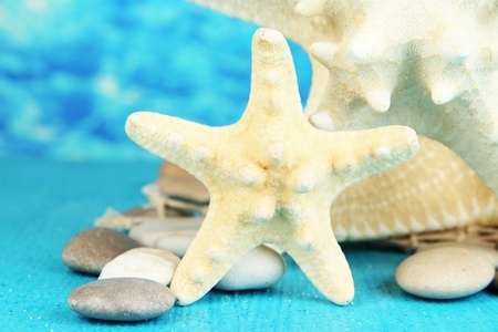 White starfishes on blue wooden table on sea background photo