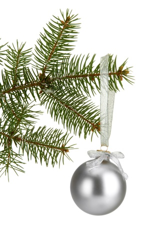 Christmas ball on fir tree, isolated on white photo