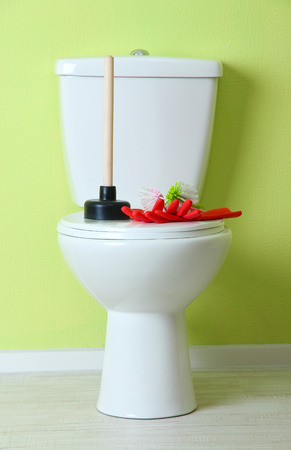 White toilet bowl and cleaner things in a bathroom photo