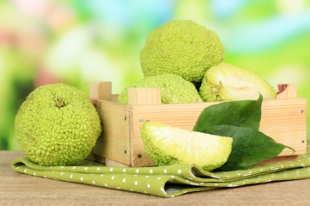 Osage Orange fruits (Maclura pomifera) in crate, on wooden table, on nature background photo