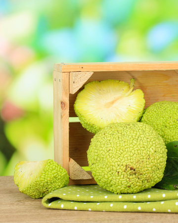 Osage Orange fruits (Maclura pomifera) in crate, on wooden table, on nature background Stock Photo - 22456770