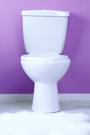 White toilet bowl in a bathroom Stock Photo - 22775938
