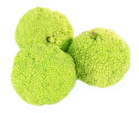 hedgeapple: Osage Orange fruits (Maclura pomifera), isolated on white Stock Photo