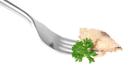 Fork with  piece of canned comber, isolated on white photo