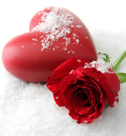 Red rose on snow background photo