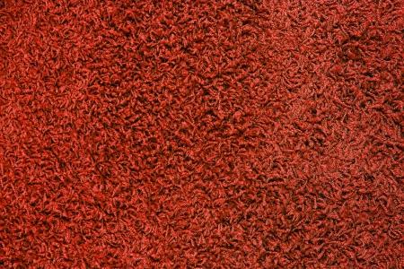 Red carpet texture Stock Photo - 22897559