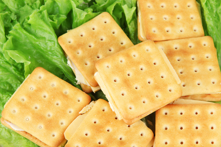 Sandwich crackers with cheese clothe up photo