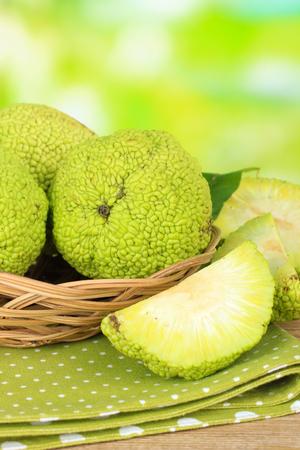 hedgeapple: Osage Orange fruits (Maclura pomifera) in basket, on nature background