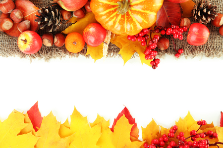 happy thanksgiving: Beautiful autumn composition, isolated on white Stock Photo