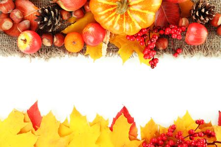 beautiful thanksgiving: Beautiful autumn composition, isolated on white Stock Photo