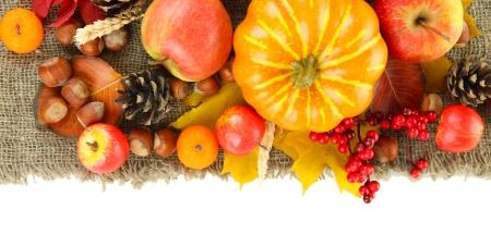 Beautiful autumn composition, isolated on white photo