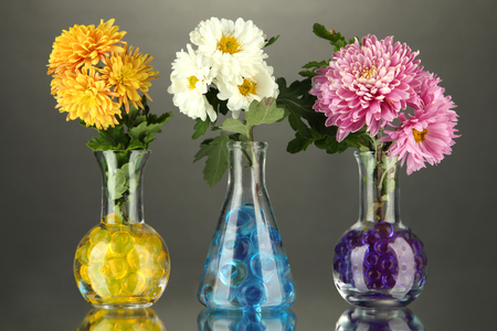 Beautiful flowers in vases with hydrogel on table on gray background photo