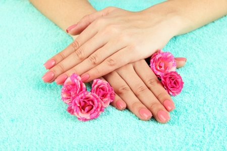 Woman hands with pink manicure and flowers, on color background photo