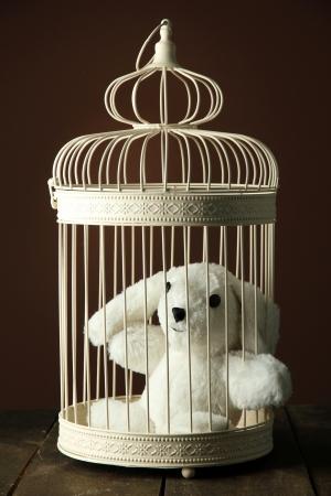 rabbit cage: Toy coniglio in gabbia decorativo su tavola di legno, su sfondo marrone