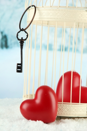 prisoner of love: Hearts in decorative cage on winter background