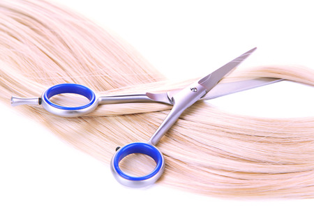 blond streaks: Long blond hair and scissors isolated on white Stock Photo