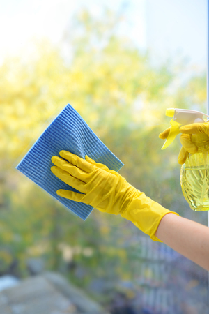 rubber gloves: Hands with spray cleaning the window