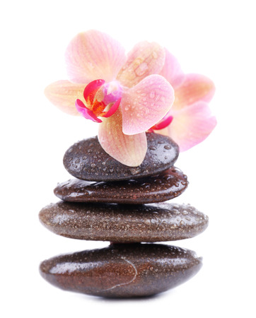 Composition with beautiful blooming orchid with water drops and spa stones, isolated on white photo