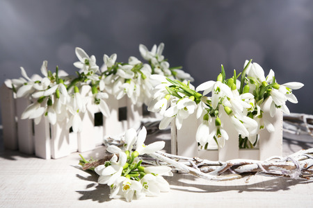 Beautiful snowdrops on grey background photo