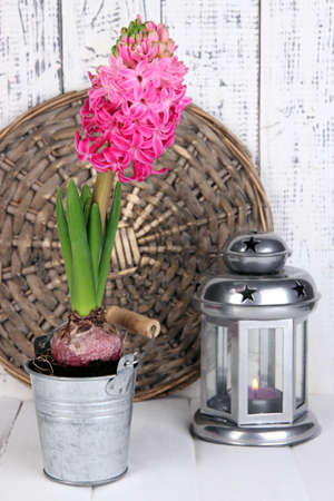 Pink hyacinth in bucket with decorative lantern on table on wooden background photo