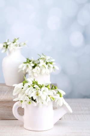 Beautiful snowdrops on light background photo