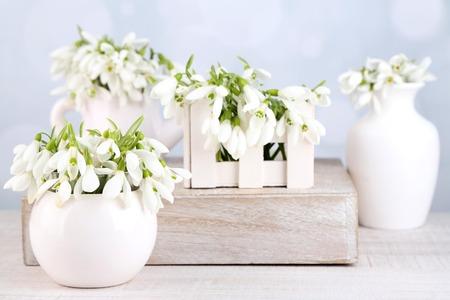Beautiful snowdrops on light background photo