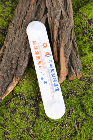 Thermometer on green grass background photo