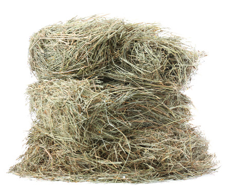 Hay, isolated on white photo