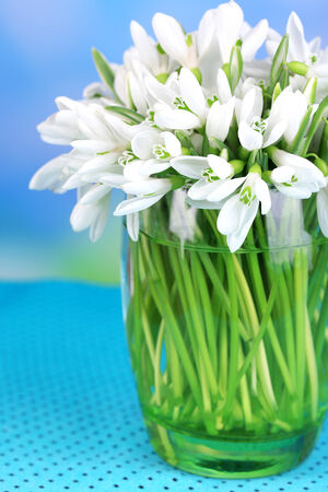 Beautiful snowdrops in vase, on table on bright background photo