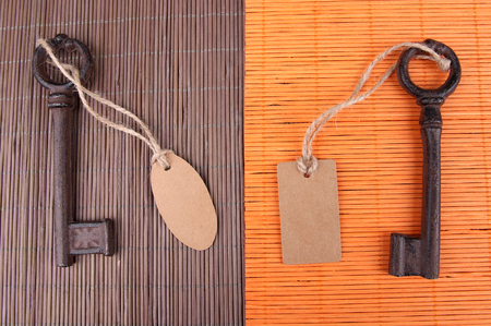 Keys with empty tag, on color wooden  photo