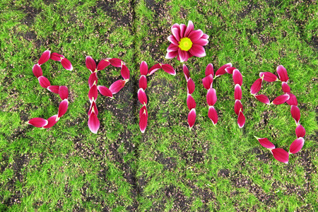 Romantic spring letters made of pink petals, on grass background photo