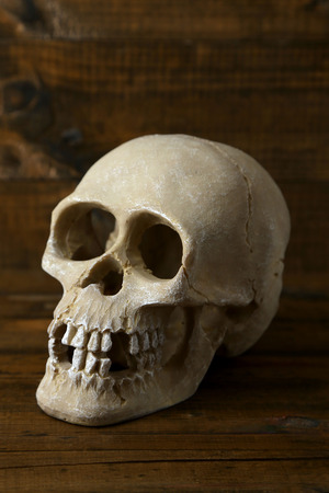 Skull on wooden background photo