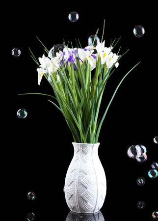 Beautiful irises on black background photo