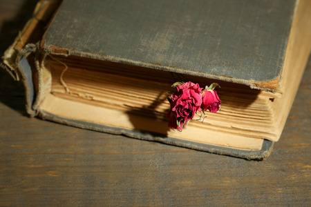 Old book with beautiful pink dried roses on old wooden background photo