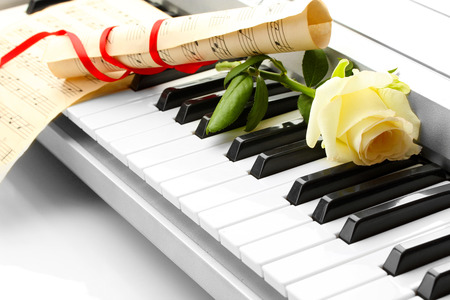background of synthesizer keyboard with flower photo