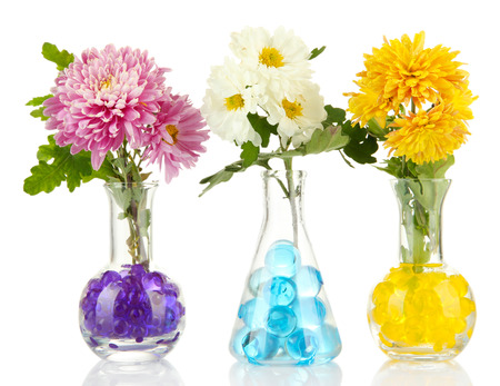 Beautiful flowers in vases with hydrogel isolated on white photo