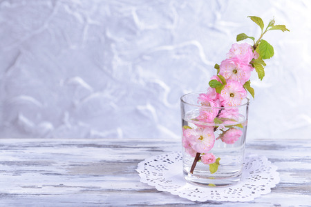 Beautiful fruit blossom in glass on table on grey background photo