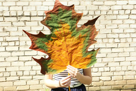 Girl holding decorative maple leaf on wall background photo