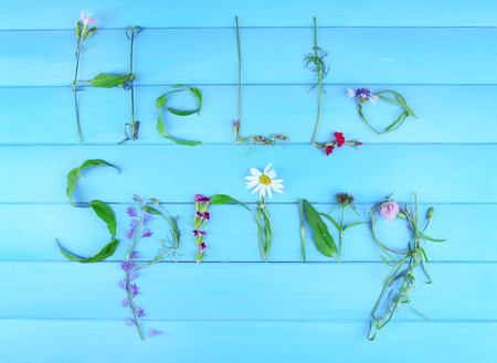 Inscription hello spring from leaves and flowers on wooden background photo