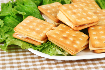 Sandwich crackers with cheese on tablecloth photo