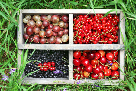 Fresh berries in wooden box on grass, outdoors photo