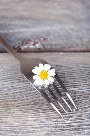 Fork with daisy flower, on wooden background  photo